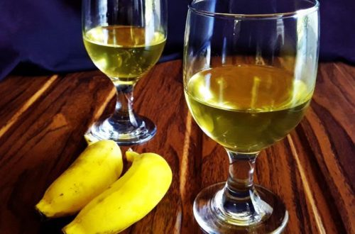 Rose Hip Wine Study Taking Root