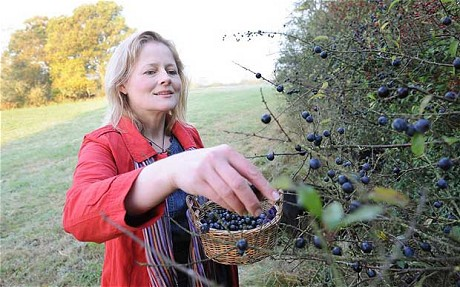 Hunting in the Hedgerows for Fruit Wine Inspiration