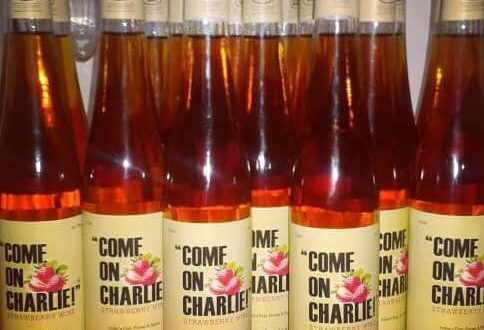 "Come On Charlie"" Fruit Wine hitting the Indian Wine Market"