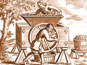 history of cider